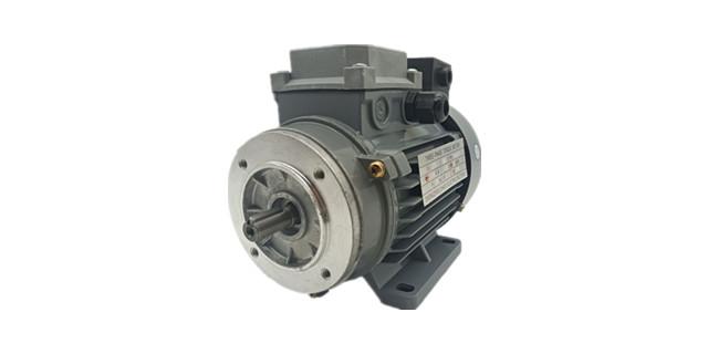 扭矩电机产品图片
