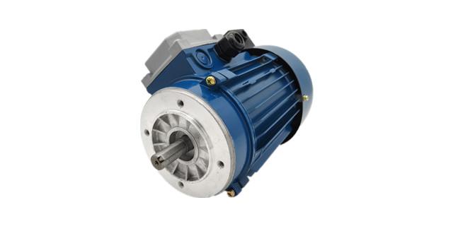 三相力矩电机产品-森力电机