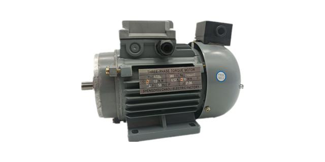 力矩电机产品图片